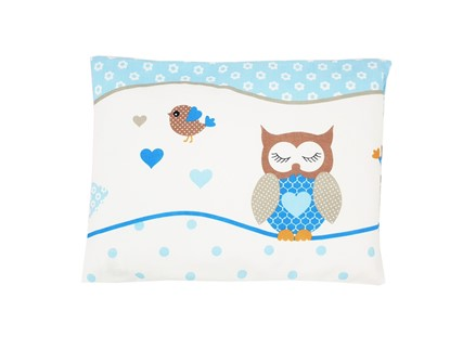 Picture of Pillow and cover for pillow  - Owls blue