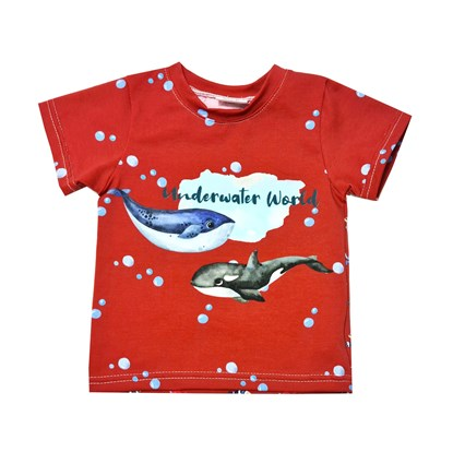 Picture of Short sleeves shirt - Sea world