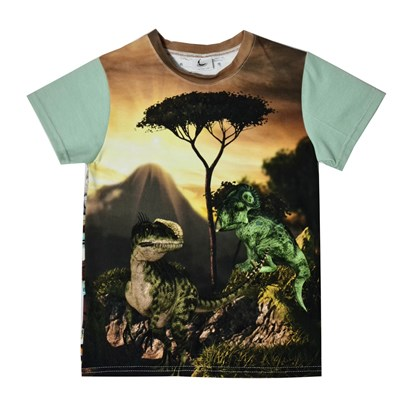 Picture of Short sleeves shirt - Dino world